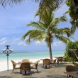 Tropical restaurant on beach under palm trees — Stok Fotoğraf #7108733