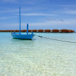 Stock Photo: Blue boat and palm tree on beach