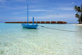 Blue boat and palm tree on beach — Stock Photo