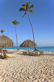 Palmer och solstolar på tropisk strand — Stockfoto