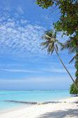Pristine white sand beach — Stock Photo