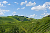Vineyard hills landscape against blue sky — Stock Photo
