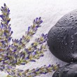 Lavender flowers concept spa and beauty — Stock Photo
