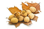 Walnuts on the autumn leaf — Stock Photo