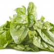 Bunch of spinach — Stock Photo #7205373
