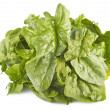 Bunch of spinach — Stock Photo