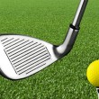 Stock Photo: Photo of golf iron club