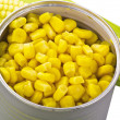 Sweet corn — Stock Photo