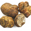 Stock Photo: White truffle