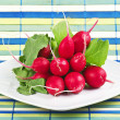 Radish and leaves — Stok fotoğraf