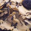 Black truffles sliced — Stock Photo