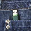 Stock Photo: Usb key in pant