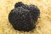 Truffles and rice — Stock Photo