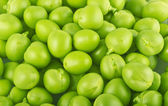 Fresh peas texture — Stock Photo