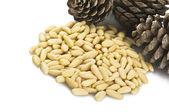 Pine nuts — Stock Photo