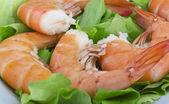 Fried Jumbo Shrimp with salad — Stock Photo