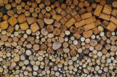 Stacked logs — Stok fotoğraf