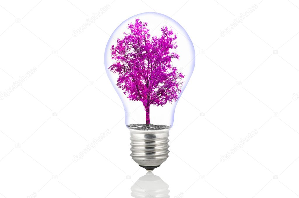 Eco energy lamp on white  Stock Photo #7203363