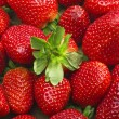 Strawberries — Stock Photo #7217772