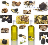 Truffles collage — Stock Photo