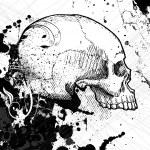 Skull vector — Stock Vector #7515799