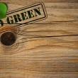 Stock Photo: Eco friendly background - go green