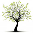 Royalty-Free Stock Vector Image: Green vector tree