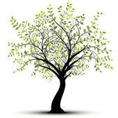 Green vector tree — Stock Vector