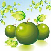 Green apples in the garden. — Stock Vector