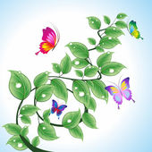 Branch with butterflies. — Stock Vector