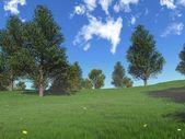 Foggy spring meadow — Stock Photo