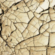 Dry earth background texture — Stock Photo #6989003