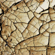 Dry earth background texture — Stock Photo