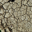 Dry earth background texture — Stock Photo #6989062