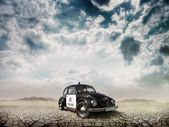 Car Beetle in the Desert — Stock Photo