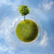 Planet with tree — Stock Photo #7019668