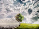 Paisagem de ecologia — Foto Stock
