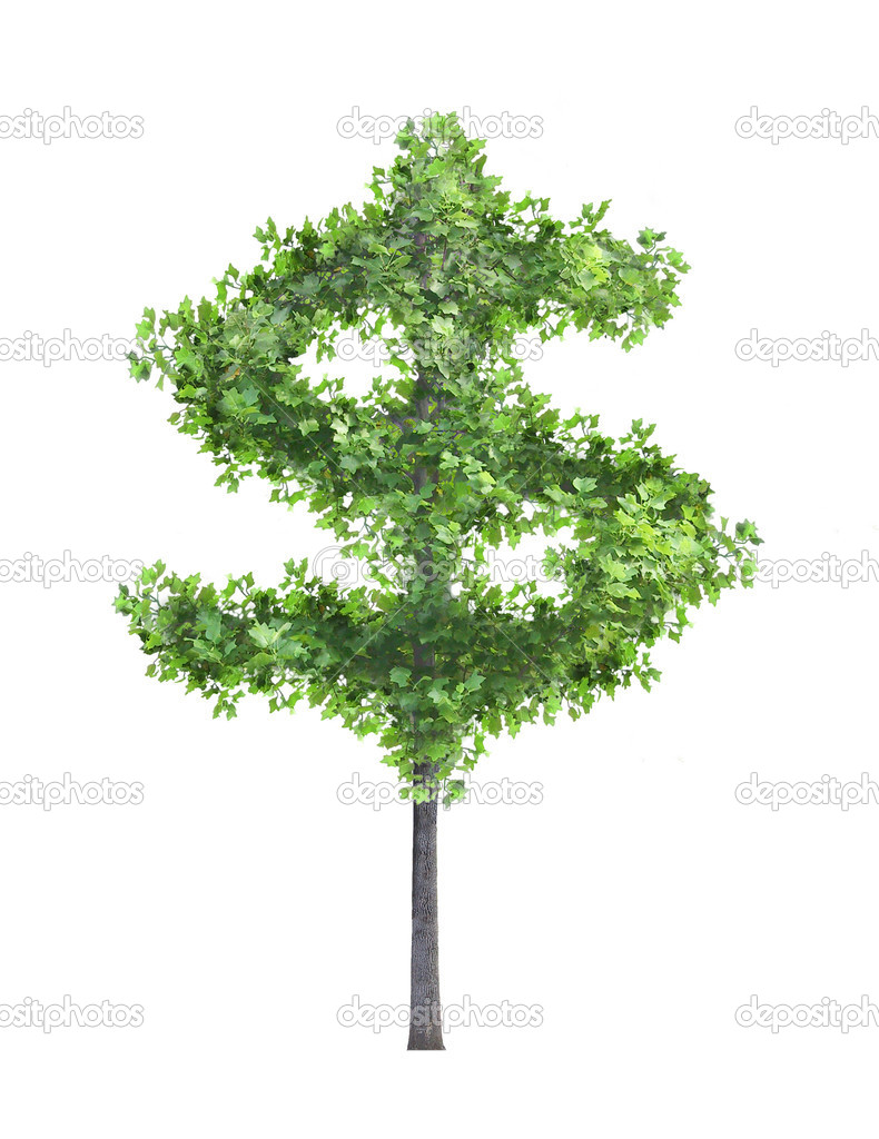 Money tree investment growth income interest savings economy funds stock market financial business — Stock Photo #7149108