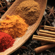 Stock Photo: Powdered spices