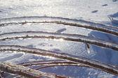 Winter ice — Stock Photo