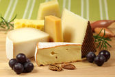 Cheese variety — Stock Photo