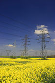 Electric pylons — Stock Photo