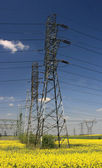 Electric pylons — Stock Photo