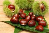 Chestnuts. — Stock Photo