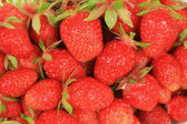 Strawberry bakgrund — 图库照片