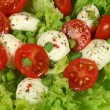 Caprese salad. — Stock Photo