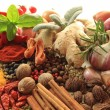 Spices and herbs. - Stock Photo