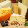 Cheese composition — Stock Photo #7682688