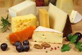 Cheese composition — Stock Photo