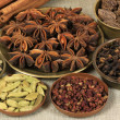 Spices — Stock Photo #7887220
